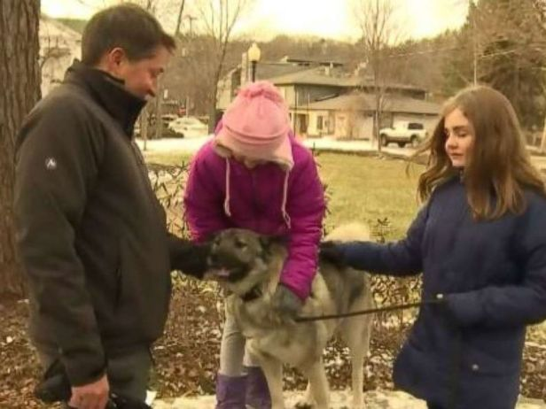 A man's dog was fully approved for unemployment, receives first $360 check