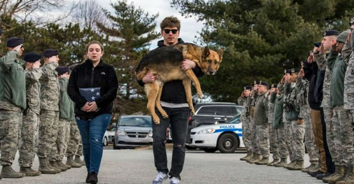 Air Force Members Give Emotional Final Salute to Beloved Military Working Dog