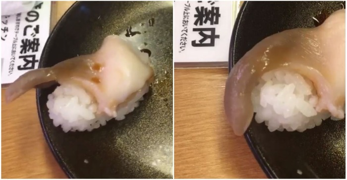 A video of a piece of sushi twitching on its plate emerges online