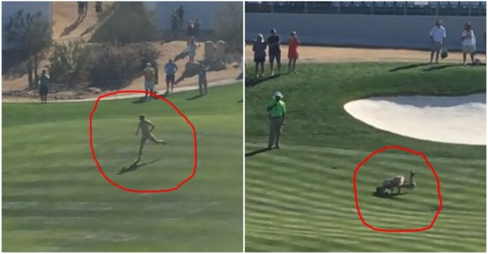 There were a lot of balls in play when a streaker decided to hit the local pro golf tournament