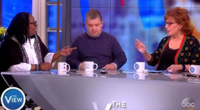 the view gun control