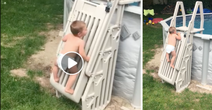 Think Your Kids Are Safe Around Pools? Watch This
