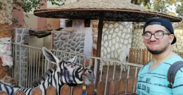 Egyptian Zoo Paints Donkey Like Zebra, Tries to Pass it Off as Zebra