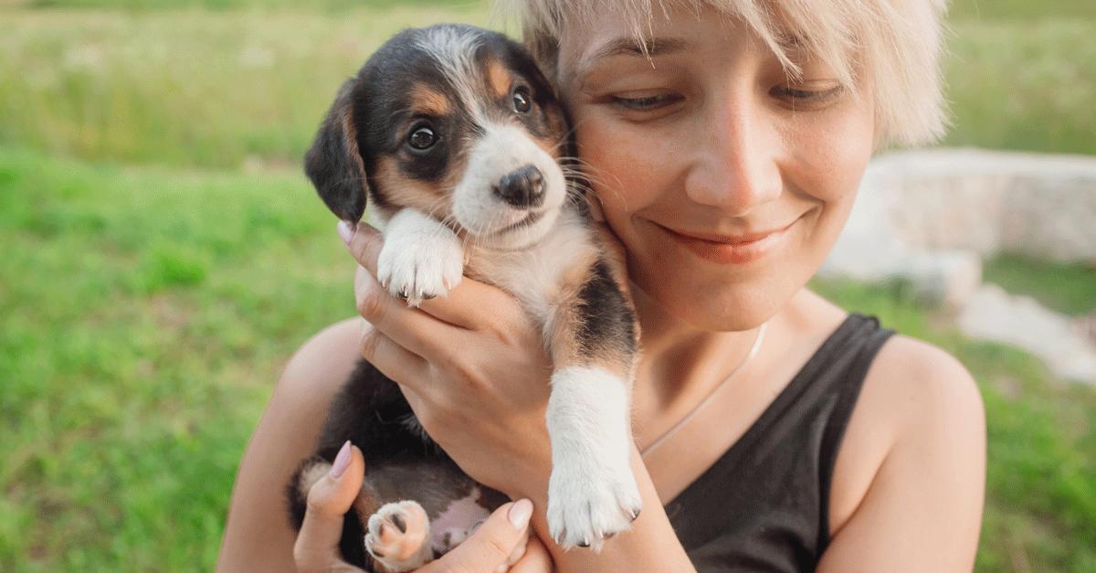 Human Empathy Dogs
