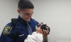 State Police Trooper Revives Unresponsive Newborn Baby