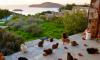 Cat Rescue Greece