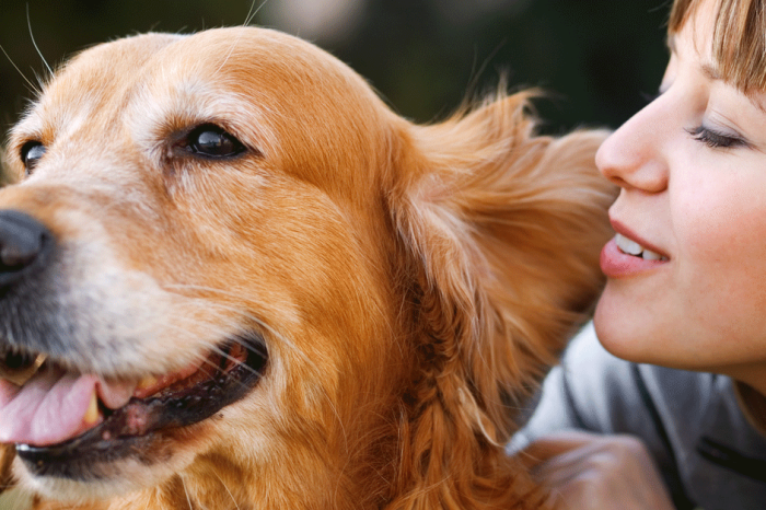 Dogs Understand Human Speech So Much Better Than We Thought