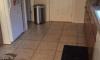 Find Dog In Kitchen