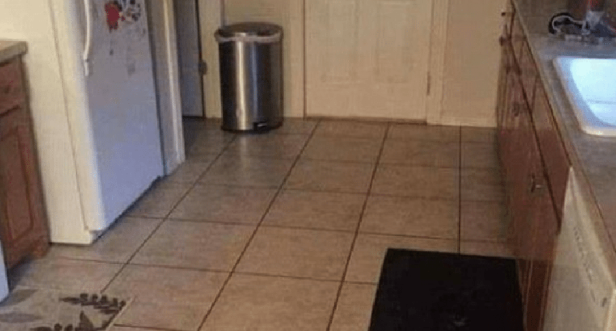 Internet Is Stumped When Nobody Can Find the Dog in the Picture