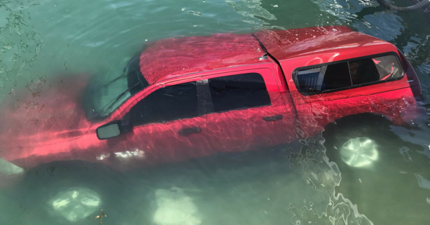 Video Shows Heroes Saving Elderly Couple and Dog from Sinking Car