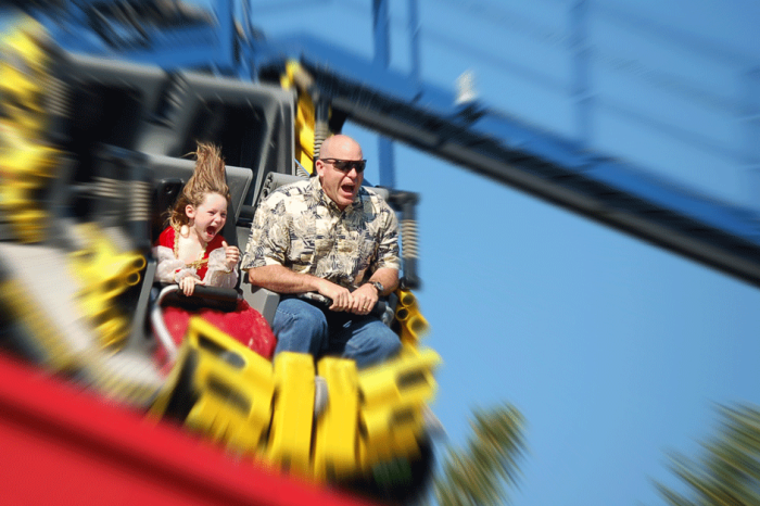 Have a Kidney Stone? Here's Why You Should Ride Roller Coasters