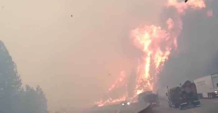 Woman Films Wildfire as it Engulfs the Highway She's Driving On