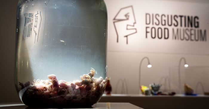 Taste Fried Tarantula, Cooked Guinea Pigs, and Maggot Cheese at The Disgusting Food Museum