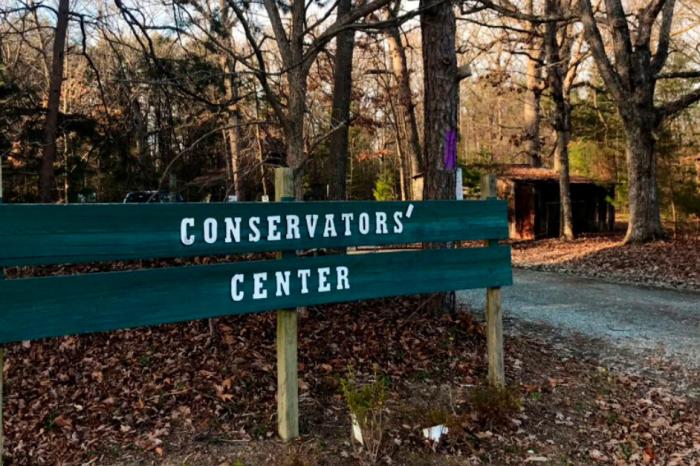 Lion Escapes, Kills Worker at North Carolina Wildlife Conservatory