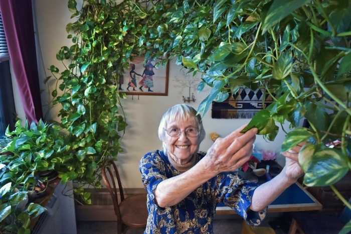 Dying Woman is Looking For A Home For 15-Foot Plant