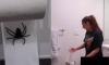 Boyfriend Hilariously Pranks Girlfriend After She Keeps Hanging Toilet Paper The Wrong Way