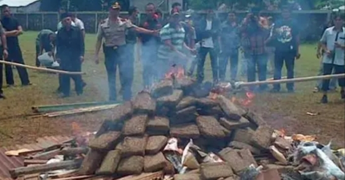 Police Accidentally Get Everyone High After Burning 3 Tons of Marijuana