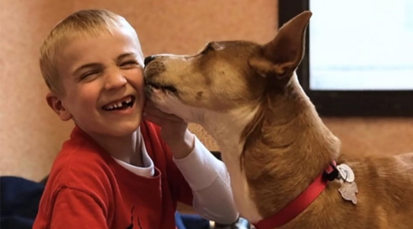 7-Year-Old Rescues More Than 1,300 Dogs From High-Kill Shelters