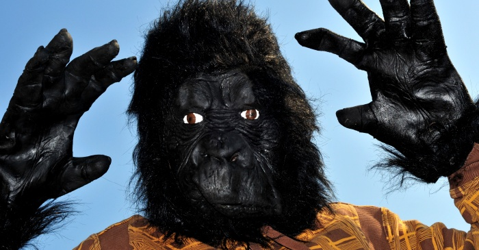 Man Wearing Gorilla Suit Breaks into Home, Hides Under Bed