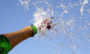 Champagne Help Memory Loss Study