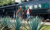Hop Aboard This All-You-Can-Drink Tequila Train Starting at $111