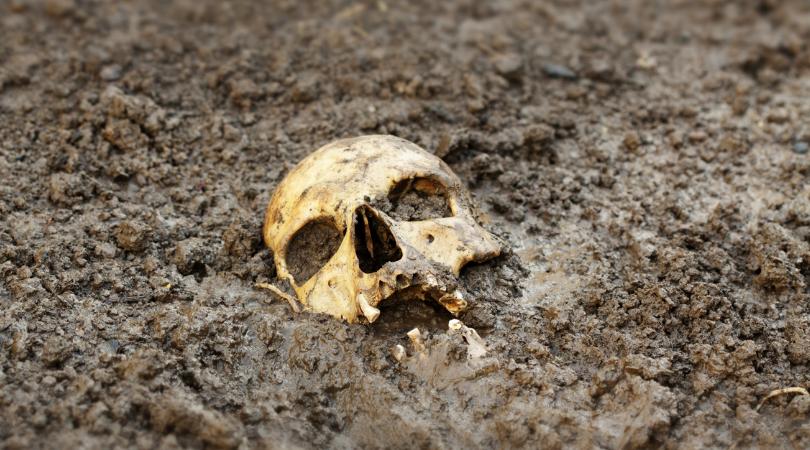 Woman Bones Found Pittsburgh