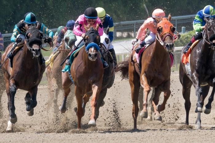 Santa Anita Racetrack to Ban Medication, Whips on Race Days