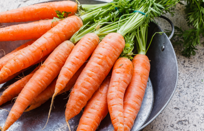 Carrots and Green Tea Reversed Alzheimer's in Mice, Researchers Find