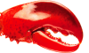 Costco Giant Lobster Claws
