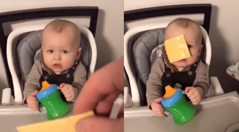 People Are Throwing Cheese At Babies, And We Can't Stop Laughing at The Reactions!