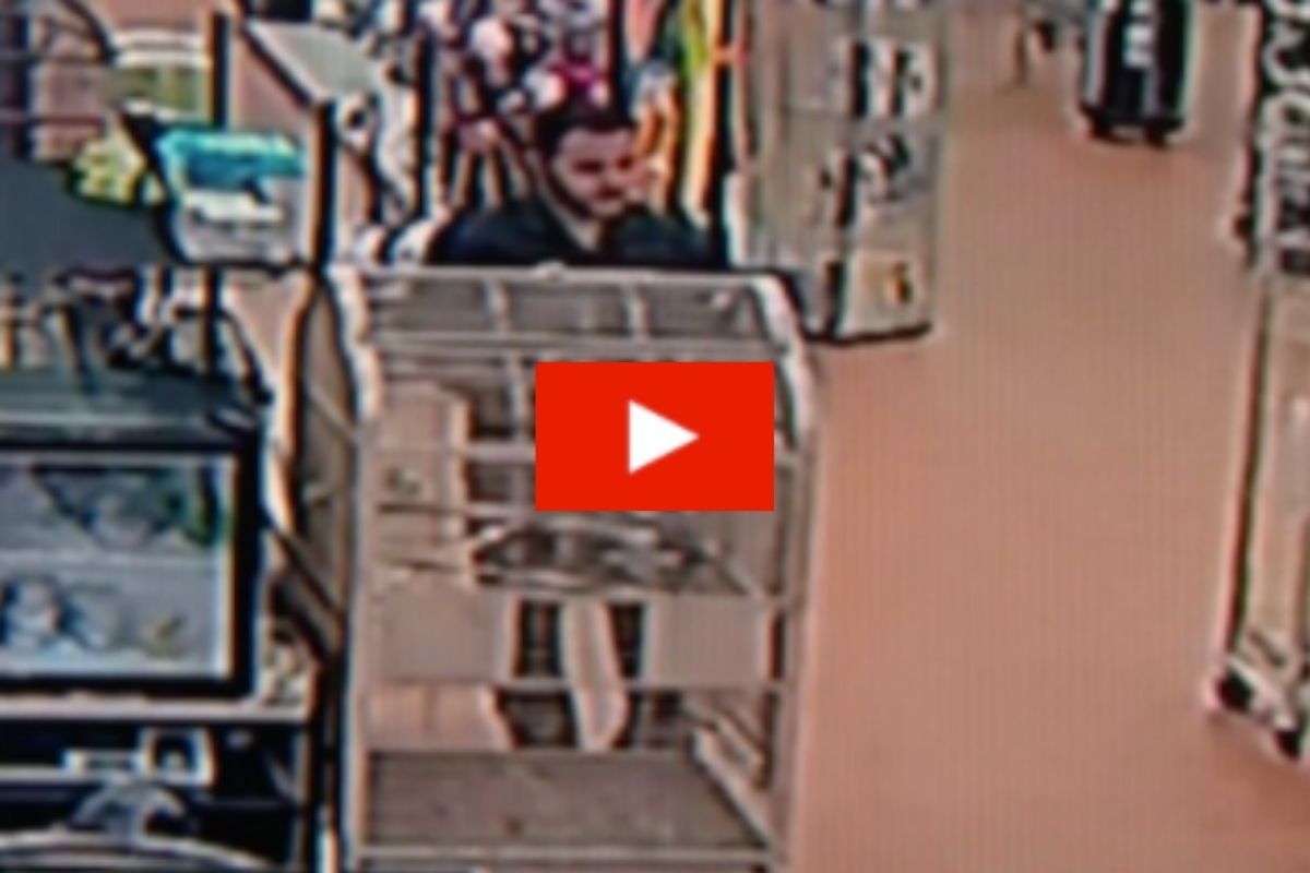 Man Shoplifts Pet Store by Stuffing 4-Foot Python Down His Pants