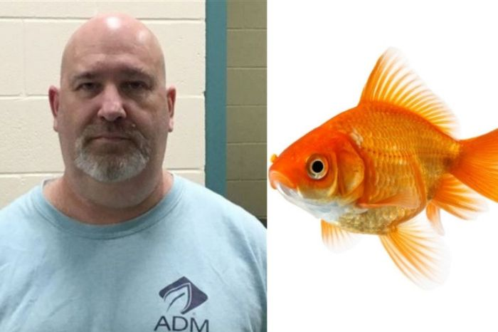 53-Year-Old Man Charged With Animal Cruelty After Abandoning His Pet Fish