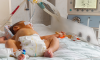 Baby Dies Home Circumcision