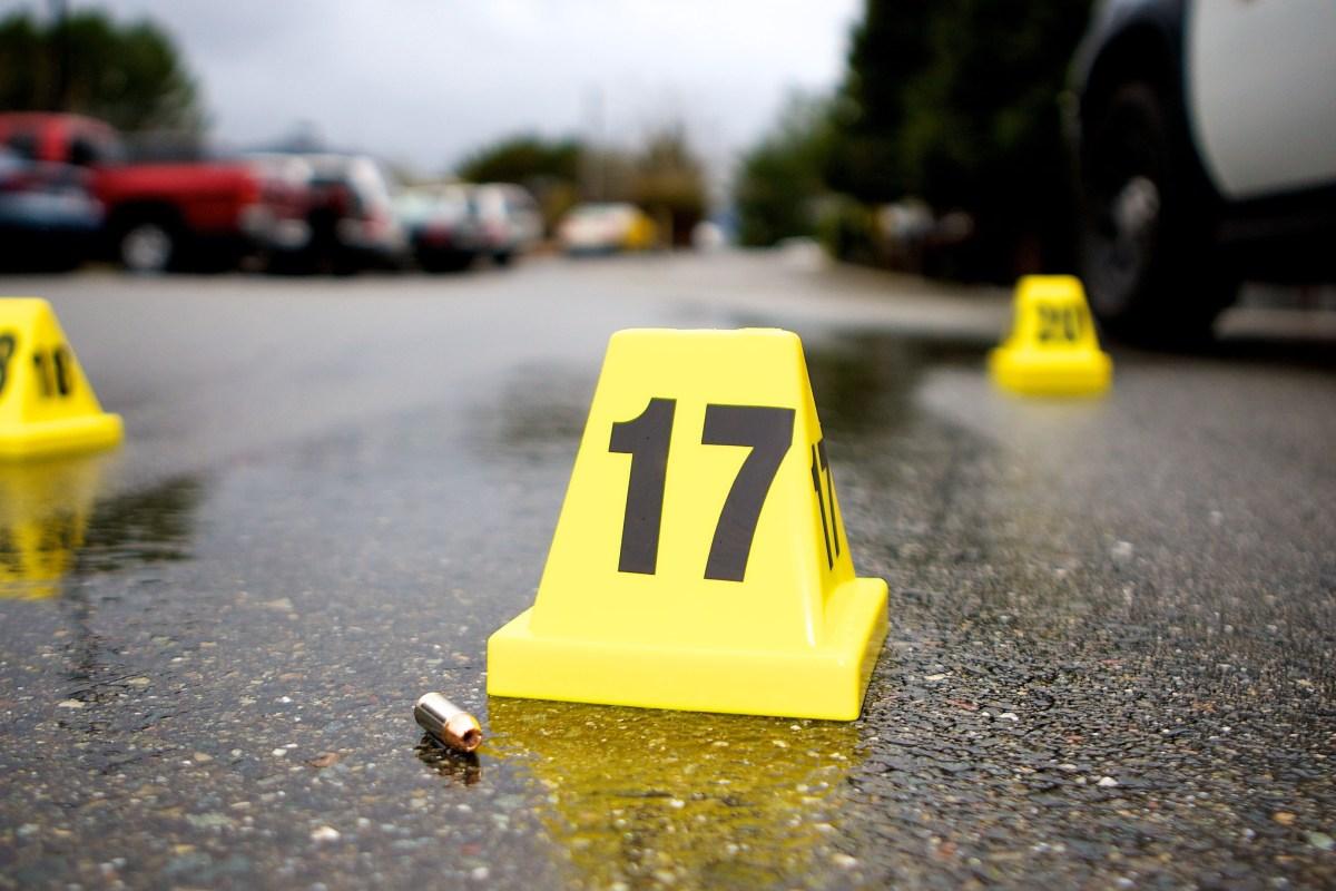Clown Murder Florida Woman