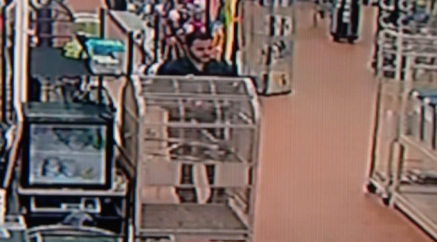 Video Shows Man Shoplifting Pet Store by Stuffing 4-Foot Python Down Pants