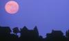 Pink Moon April Full Moon