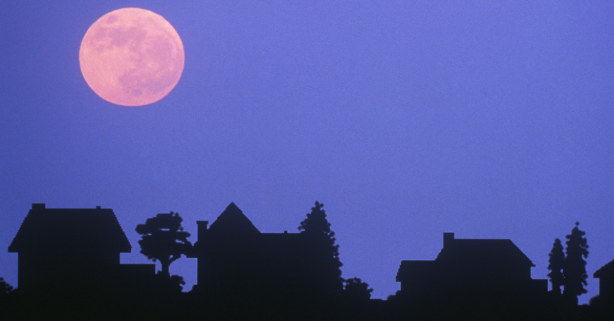 A Pink Moon Is Rising This Week, Here's How to See It