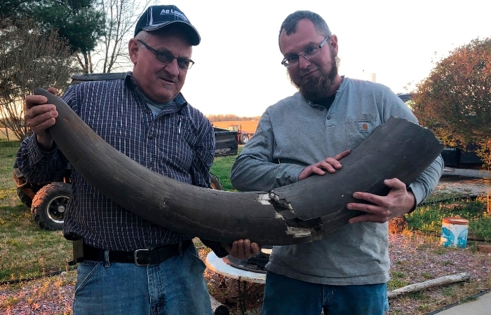 Huge Mastodon Bones Dug up on Indiana Farm, Teeth and All