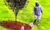 Boston Vietnam War Memorial Vandalized