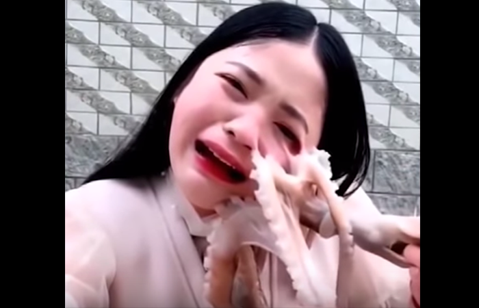 Social Media Influencer Films Attempt to Eat Live Octopus, Gets Attacked by Live Octopus