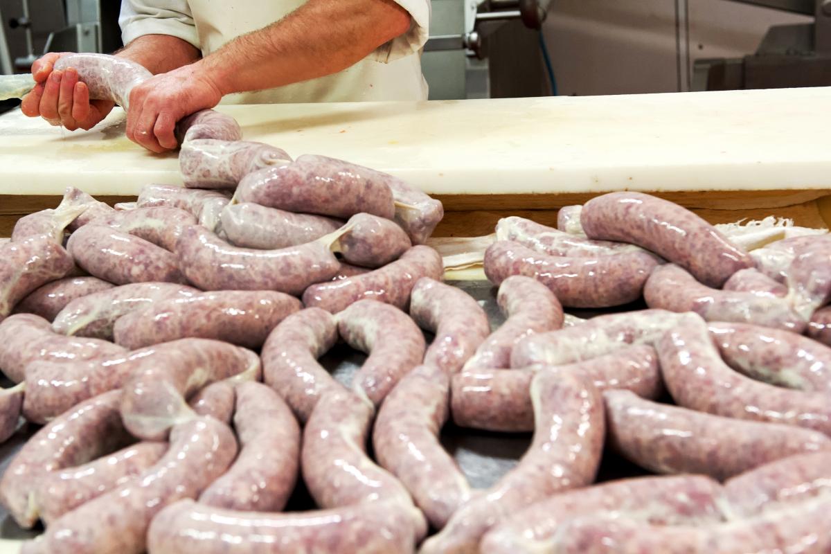 Maggot Sausage