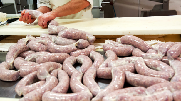 Maggot Sausages Could Become a Meat Alternative