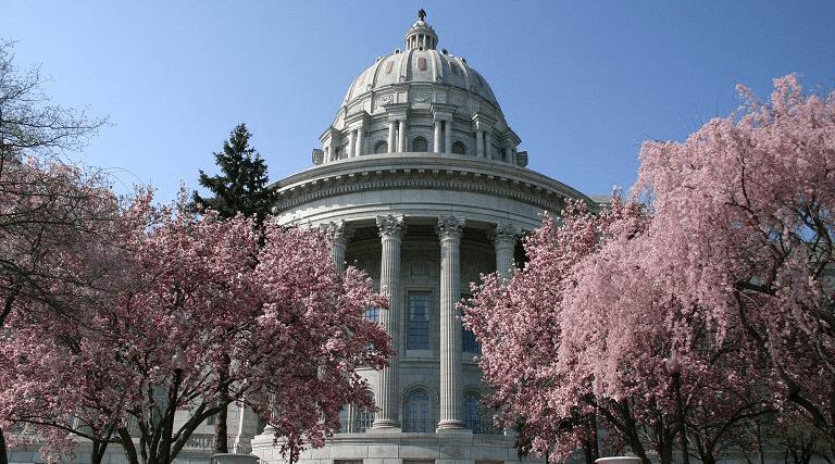 Missouri State Senate Abortion