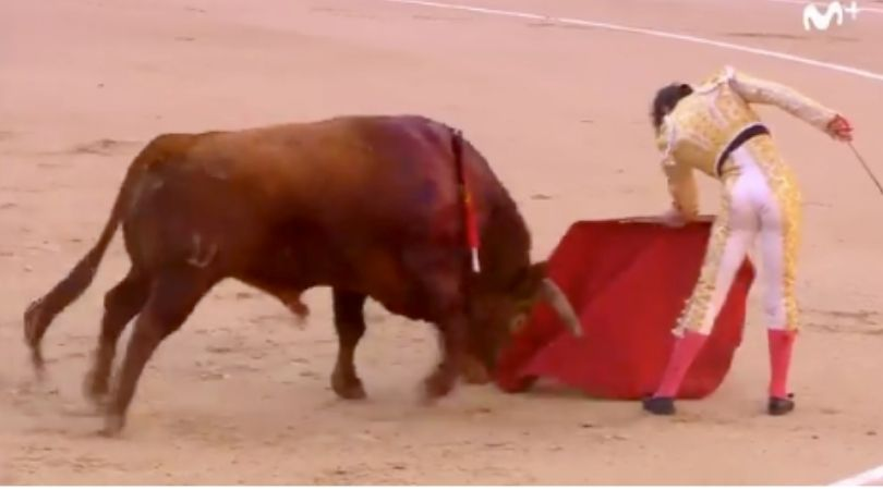 Matador Suffers Gruesome Butt Wound After Being Gored by Bull