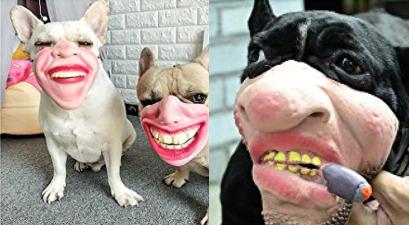 Dog Mask Muzzles