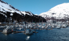 Whittier Alaska Where Is It