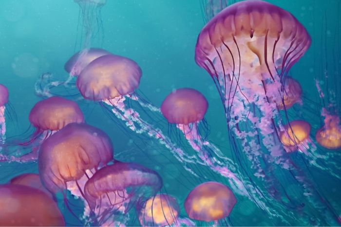Does Peeing on a Jellyfish Sting Actually Work?