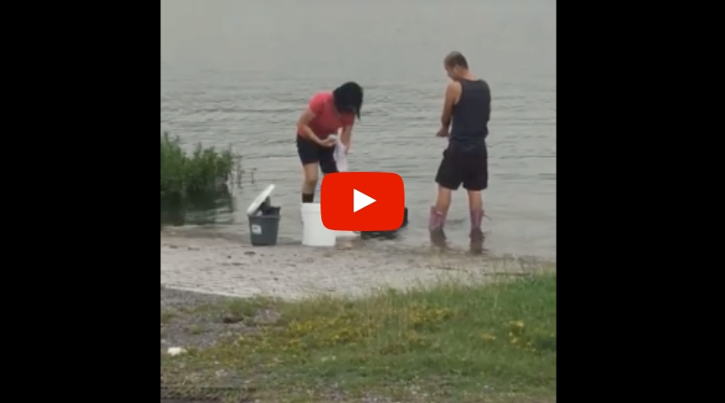 Restaurant Caught Washing Grill, Rags and Pots in Lake