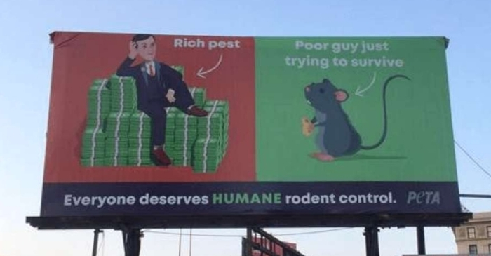 PETA Billboard in Baltimore Calls Jared Kushner a 'Rich Pest'