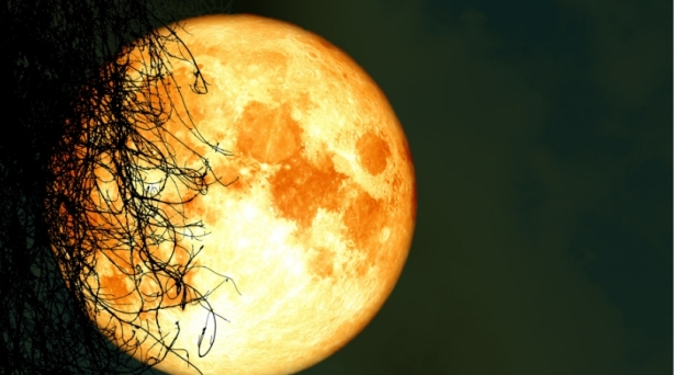 A Full Harvest Moon Will Light Up The Sky This Friday the 13th